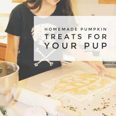 Homemade Pumpkin treats for you Pup